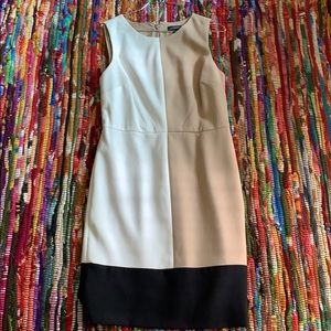 The Limited Tank Dress